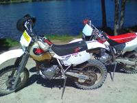 IDXR600's picture